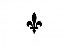 Vlag van Aarschot