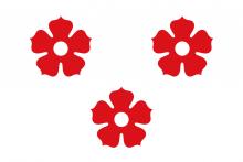 Vlag van Ardooie