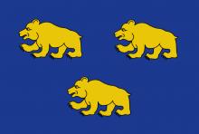 Vlag van Beernem