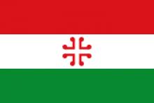 Vlag van de Haan