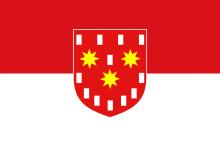Vlag van De Pinte