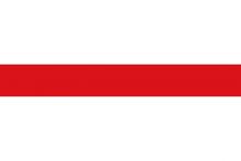 Vlag van Dendermonde