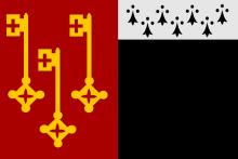 Vlag van Destelbergen