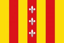 Vlag van Duffel