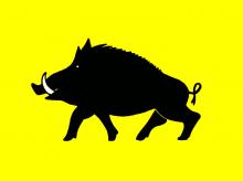 Vlag van Evergem