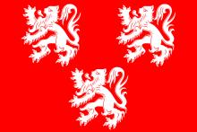 Vlag van Gavere