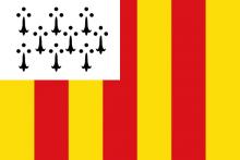Vlag van Geel