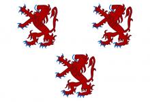 Vlag van Haaltert