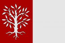 Vlag van Herentals