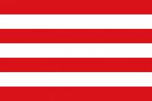Vlag van Hulshout