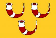 Vlag van Kinrooi