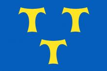 Vlag van Lede