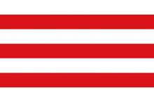 Vlag van Lier