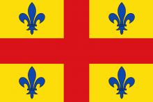 Vlag van Lint