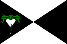 Vlag van Lokeren