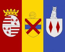 Vlag van Londerzeel