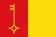 Vlag van Mol