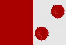 Vlag van Pittem