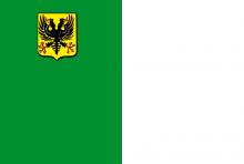 Vlag van Ronse