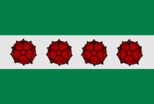 Vlag van Roosdaal