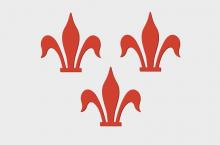 Vlag van Rotselaar