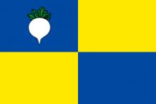 Vlag van Sint-Gillis-Waas