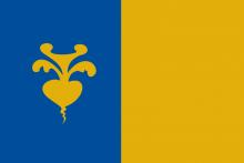 Vlag van Sint-Niklaas