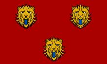 Vlag van Staden