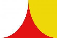 Vlag van Steenokkerzeel