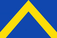 Vlag van Ternat