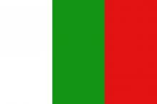 Vlag van Tielt-Winge