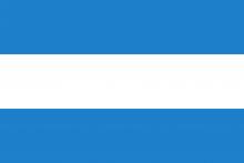 Vlag van Tienen