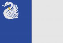 Vlag van Tongeren