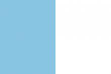 Vlag van Turnhout