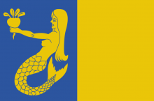 Vlag van Waasmuntster