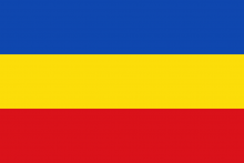 Vlag van Wichelen
