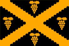 Vlag van Wijnegem