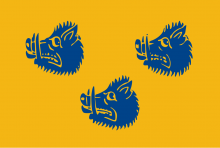Vlag van Wommelgem