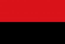 Vlag van Zoutleeuw