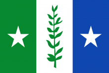 Vlag van Zwijndrecht